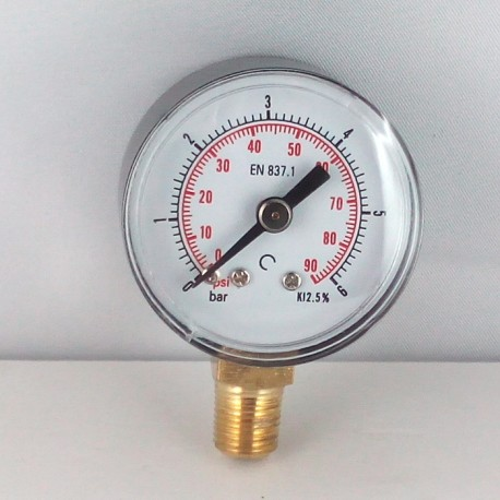 Dry pressure gauge 6 Bar diameter dn 40mm bottom