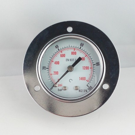 Dry pressure gauge 100 Bar diameter dn 50mm front flange